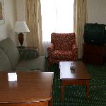 Living Room (1 Bedroom Suite)