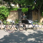 Foto de Napa Valley Bike Tours