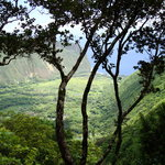 Waipi&#39;o valley