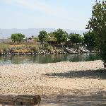  More typical river view site.  Needles Marina RV Park