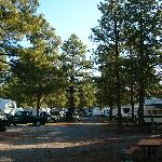 Bild från Circle Pines KOA Campground