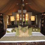 Foto andBeyond Ngala Tented Camp