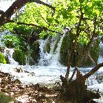 A waterfull at Plitvice
