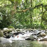  Cleanest water you&#39;ll ever see, inside the rainforest