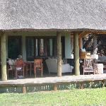 Foto andBeyond Phinda Zuka Lodge