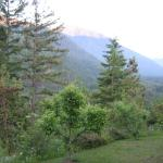 Elwha Ranch Bed and Breakfast