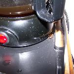 The roach on the coffee pot