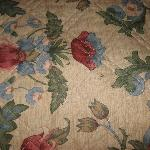 Stain on Bed spread