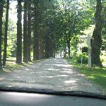 Entrance drive to the lodge