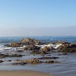 Carpinteria State Beach Campground resmi