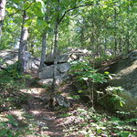 Panola Mountain State Conservation Park