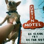 Floyd at the Austin Motel's famous sign