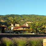 View of the winery estate from Lake.