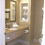 Holiday Inn Express Hotel & Suites New Tampa I-75 Bruce B. Downs resmi