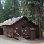 Grant Grove Cabins