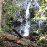 more pix of waterfall, easy walk from car park