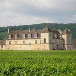 Close de Vougeot