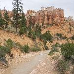 Foto de Bryce Point Bed and Breakfast