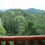 View from back porch of cabin #849