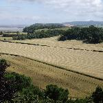 Farmland rolling to the sea near Dunster Castle