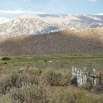 Historic cemetary in sagebrush setting