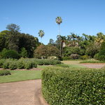 Brisbane Botanic Gardens Mt. Coot-tha