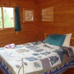 Shenandoah River Outfitters and River Cabins