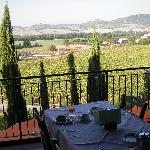 Photo of Fattoria Belvedere