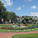 Beautiful Gardens of Torquay