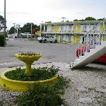 Big Pine Key Motel의 사진