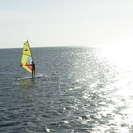 Windsurfing School & Paddle Tennis