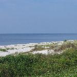  Carrabelle beach
