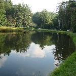 Bilde fra Montebello Camping and Fishing Resort