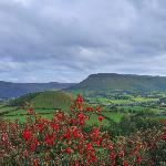 Cushendall