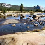 Tuolumne Meadows