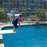 my son loving the diving board