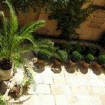  Courtyard Garden