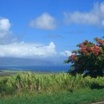 Photo de Peace Of Maui