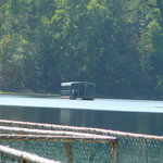 Barge on the lake at Bays Mountain