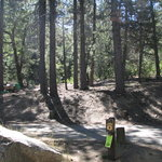 Pineknot Campground #41