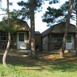 Diamond John's Riverside Retreat의 사진