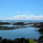 Nearby Tide Pools- Fantastic snorkeling
