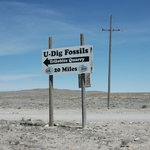 U-Dig Fossils
