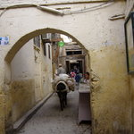 Medina of Fez