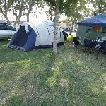 Jurien Bay Tourist Park Foto