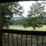 View from front deck @ Settler cabin -- deer gather in the meadow @ dawn & dusk