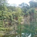 Bukit Timah Nature Reserve
