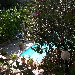  Garten und Pool des Tirrenia Roberts B&amp;B