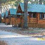 A few of the cabins they offer to rent