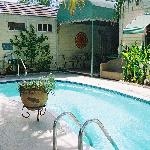 Foto de Tropical Gardens Bed & Breakfast